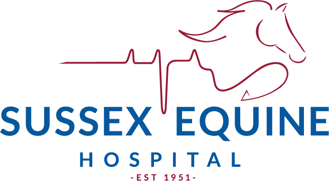Sussex Equine Hospital